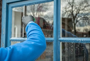 Websites for Window Cleaners